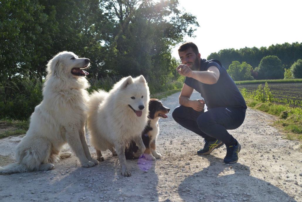 devenir entrepreneur l'exemple de Thomas Martin avec Pôle Canin