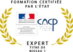 mastère marketing certifié rncp bac+5