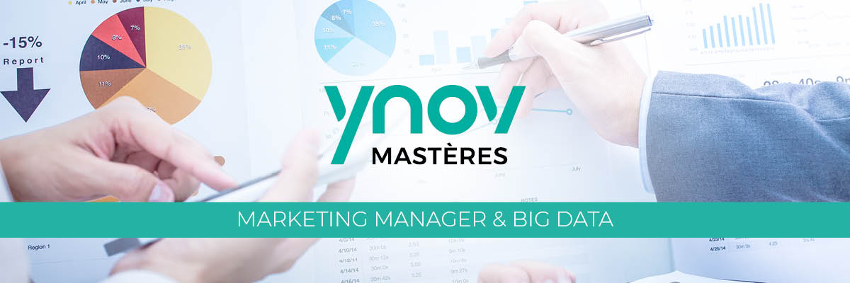 Mastère Marketing Manager et Big Data