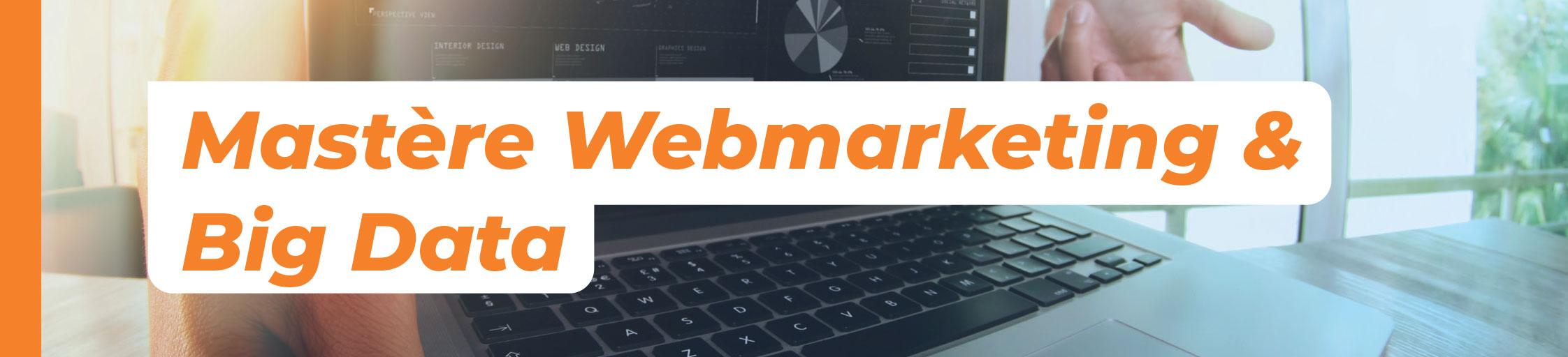 mastere webmarketing big data