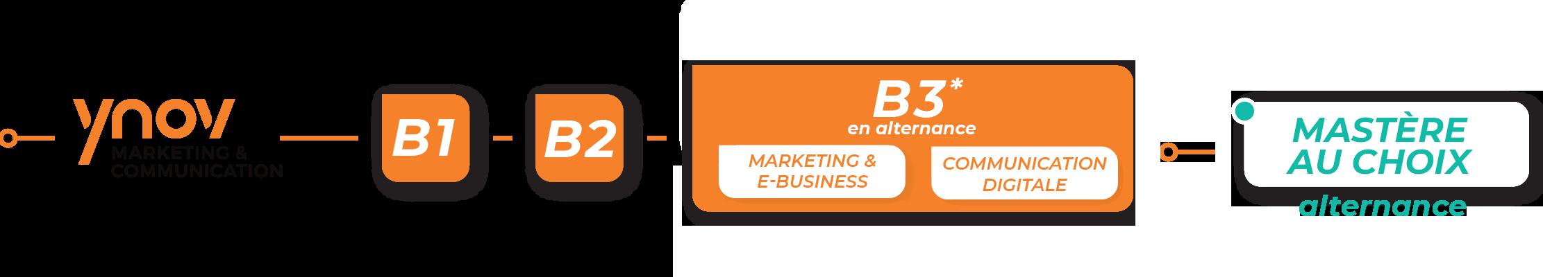 bachelor marketing progression